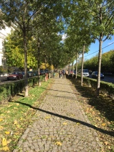 Pedestrian walkways make it easy to walk east from the city center