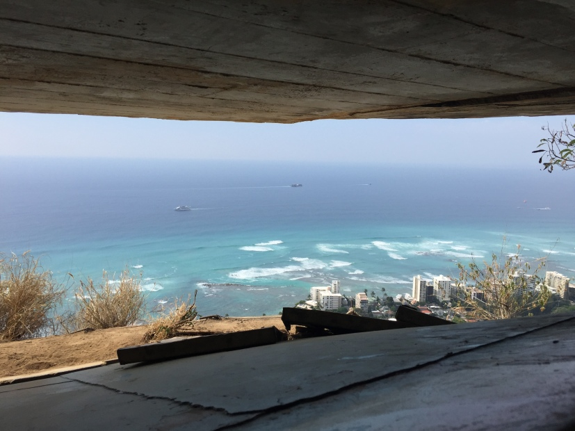The view from inside the lookout