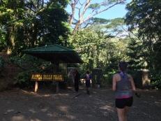 Manoa Falls Trailhead