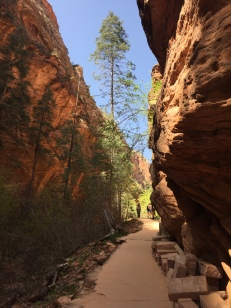 Canyons before you get to Walter's Wiggles